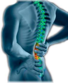back, neck and shoulder pain